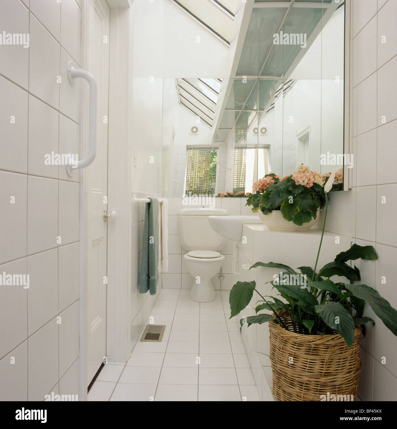 Captivating Small Narrow Modern White Tiled Bathroom Extension With Green Houseplant In  Basket