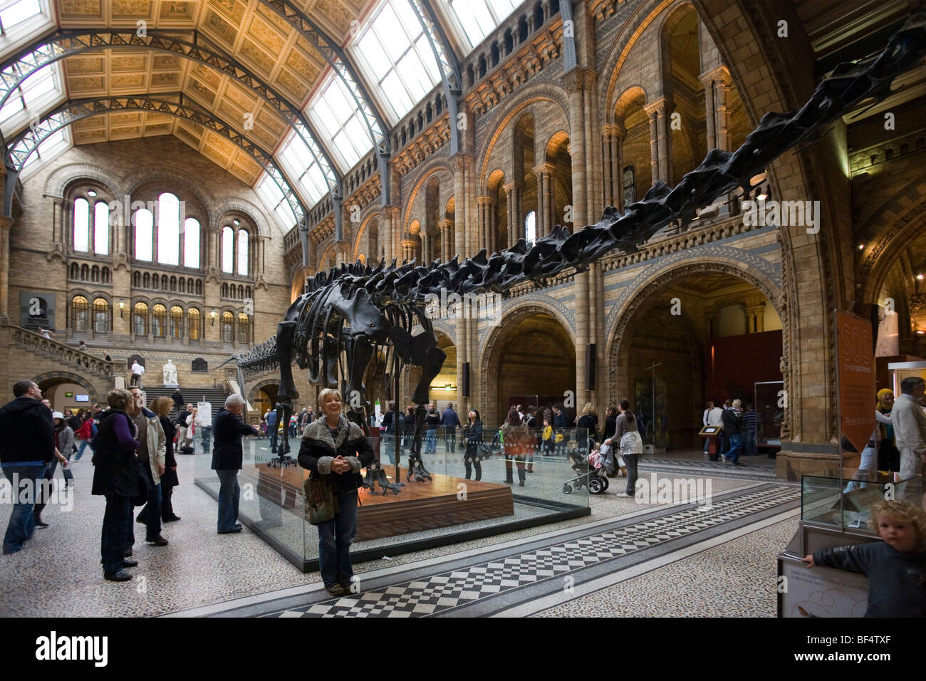 Museum Entry Foyer : The grand entrance hall natural history museum south