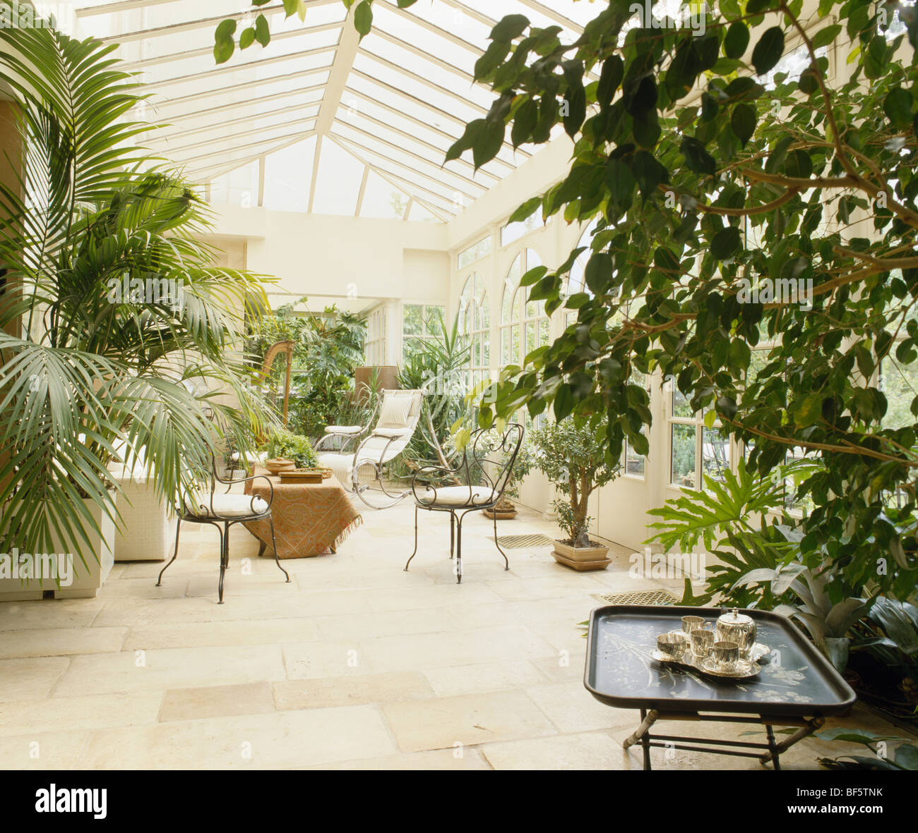 tall houseplants in large traditional conservatory with cream tiled floor - Tall House Plants