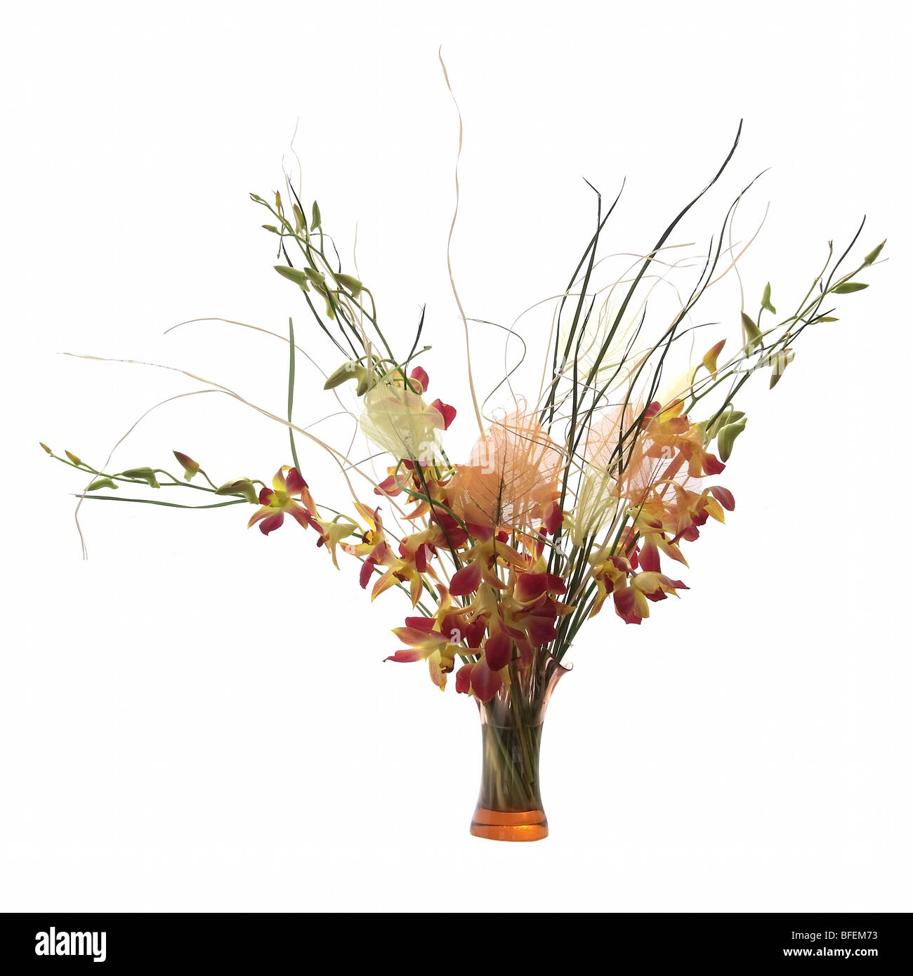 Bouquet of orchids in vase isolated on white background stock bouquet of orchids in vase isolated on white background reviewsmspy