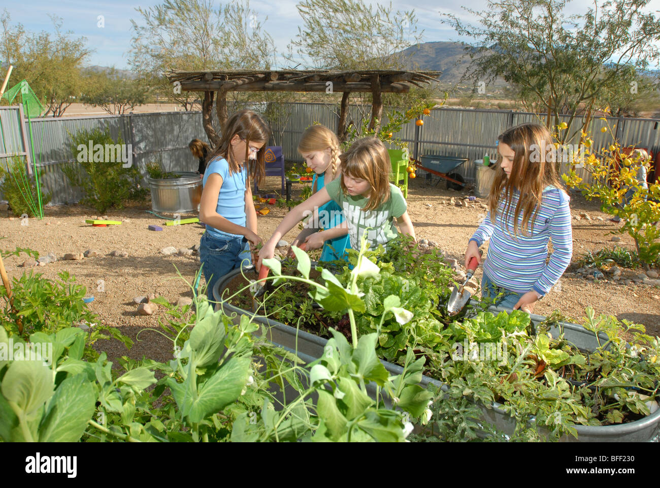 Civano Community School In Tucson, Arizona, USA, Won First Place In A  National Contest As The Greenest School In America