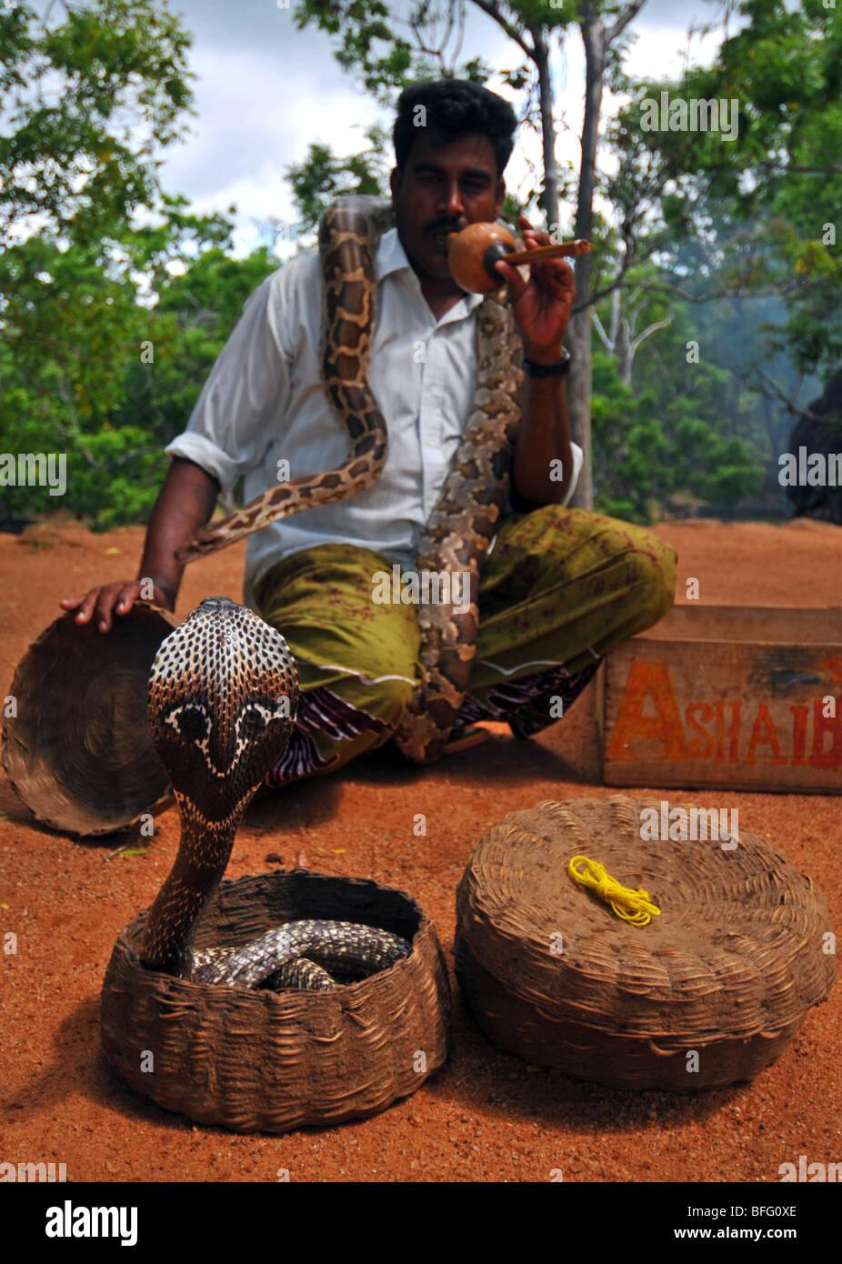 how to avoid snakes in sri lanka