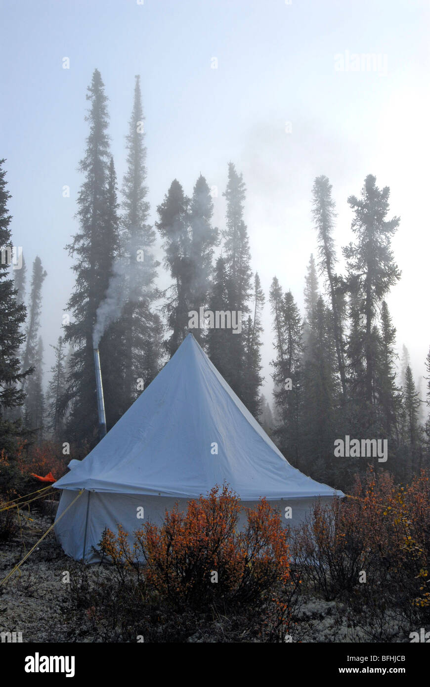 C&ing-wall tent set up in middle of woods. Foggy morning and smokeu0027s coming from stove chimney inside of tent. Yukon Territory & Camping-wall tent set up in middle of woods. Foggy morning and ...