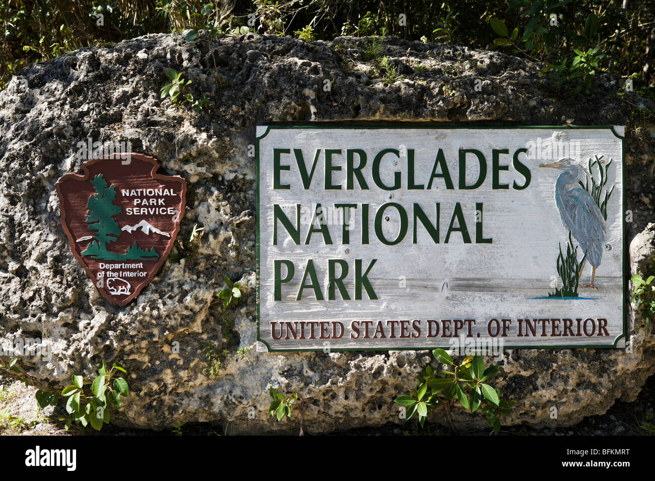 Image result for everglades national park fort lauderdale
