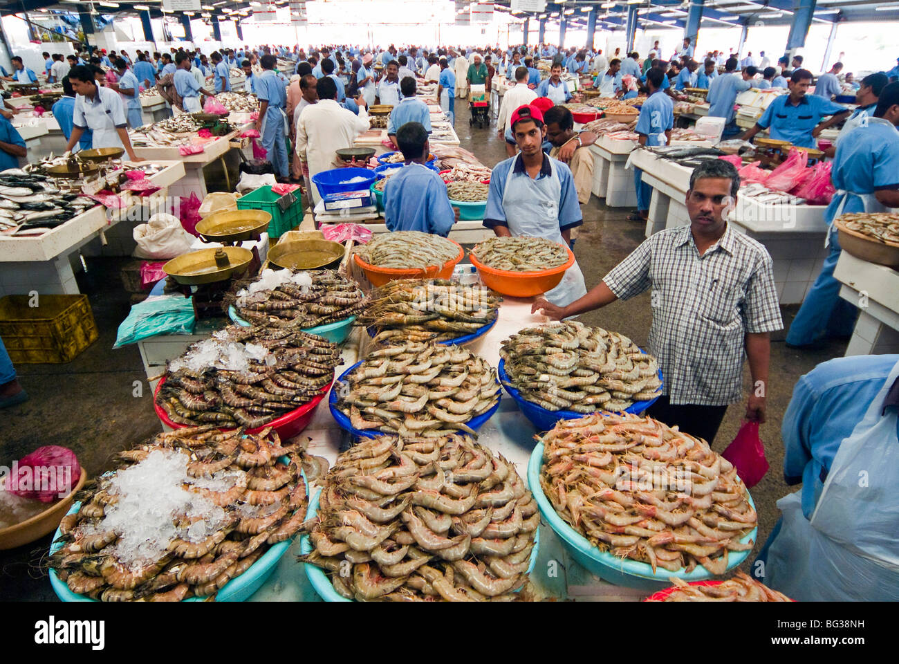 Fish market dubai united arab emirates middle east for Fish market hours