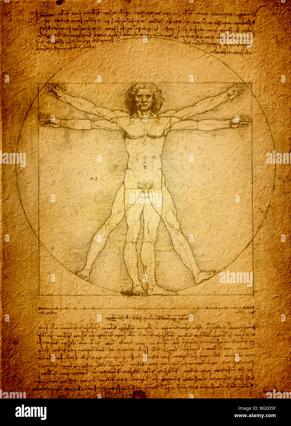 vitruvian man by leonardo da vinci in pen and ink 1490 stock photo royalty free image 27121067. Black Bedroom Furniture Sets. Home Design Ideas