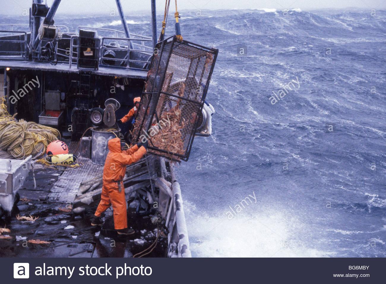 Alaska commercial fishing deck crew members bring a crab for Alaska commercial fishing jobs
