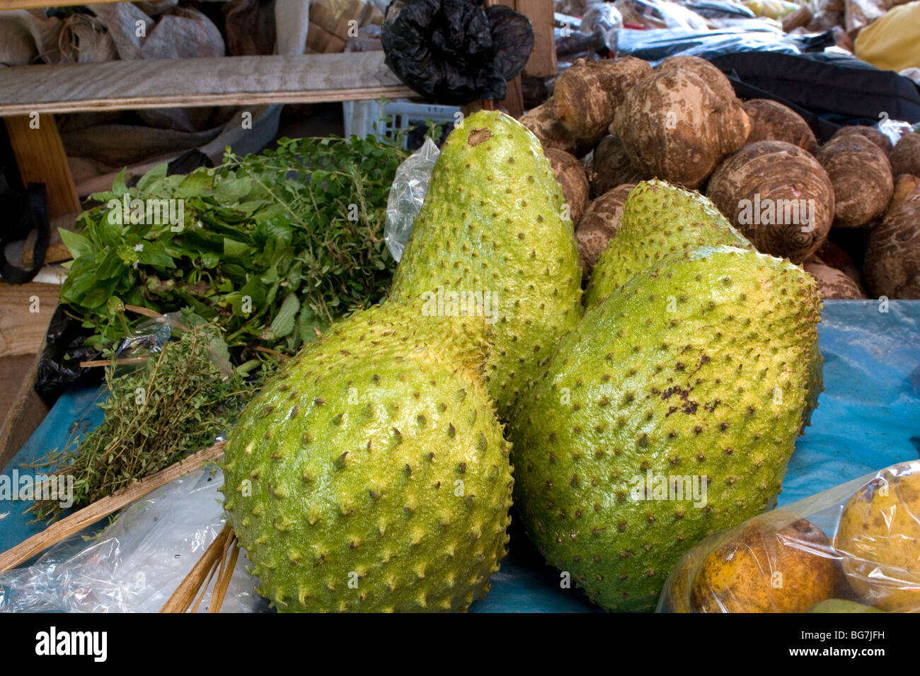 how to use soursop fruit