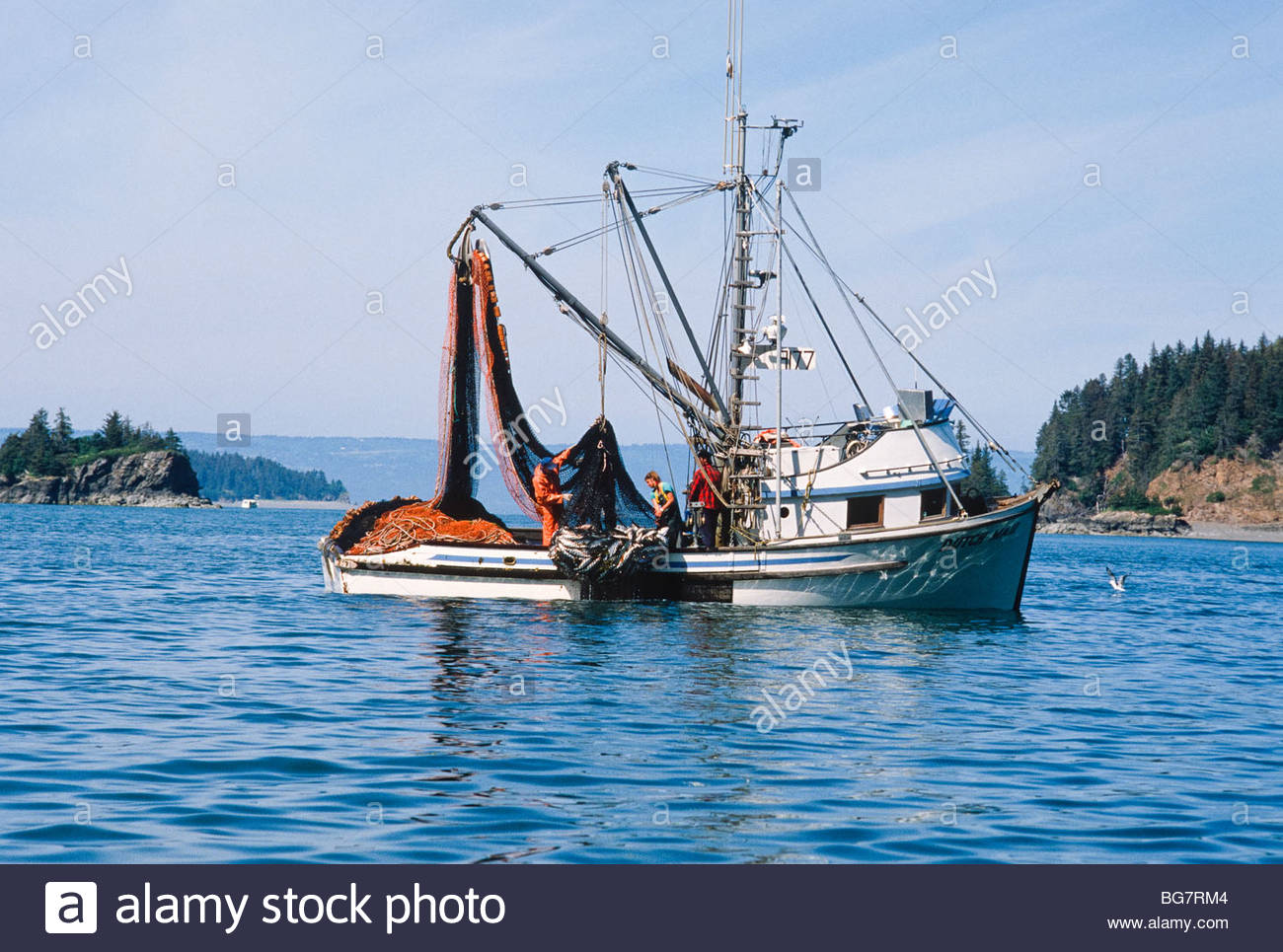 Alaska commercial fishing seine boat hauling a net ful of for Alaska fishing boats