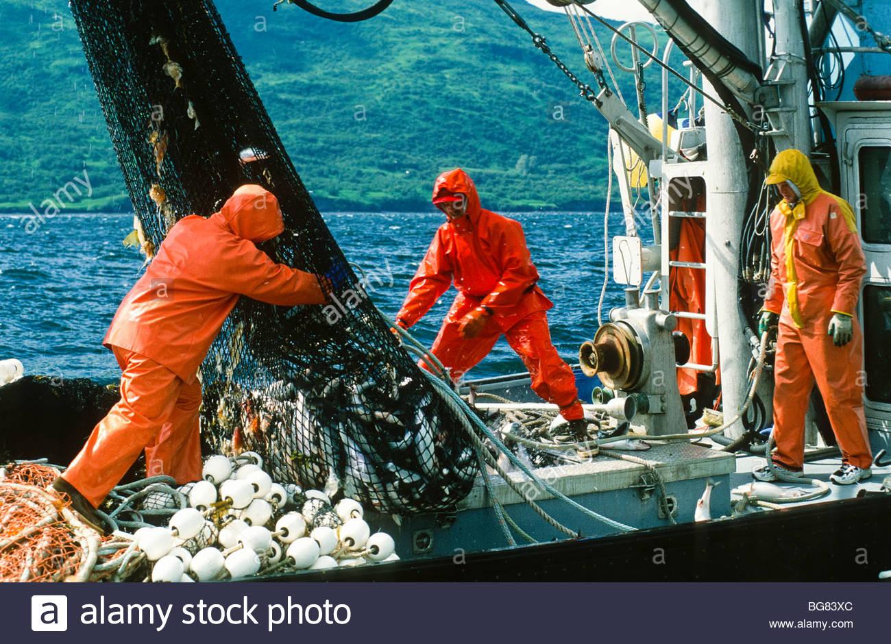 Alaska kodiak island uganik bay salmon seining for Pure fishing jobs