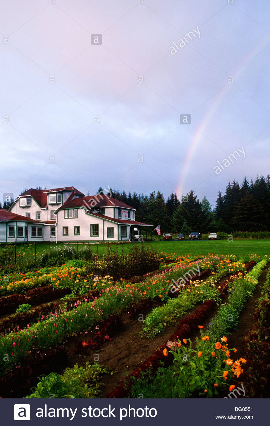 Alaska Gustavus Rainbow Over The Fertile Garden Of The Gustavus