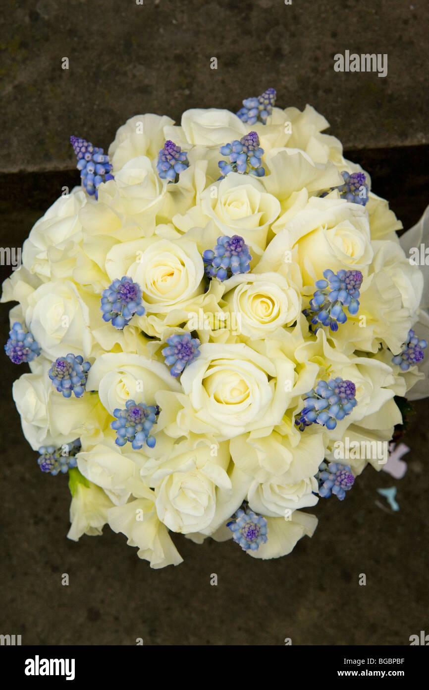 Yellow roses and blue grape hyacinth wedding bouquet stock photo stock photo yellow roses and blue grape hyacinth wedding bouquet dhlflorist Choice Image