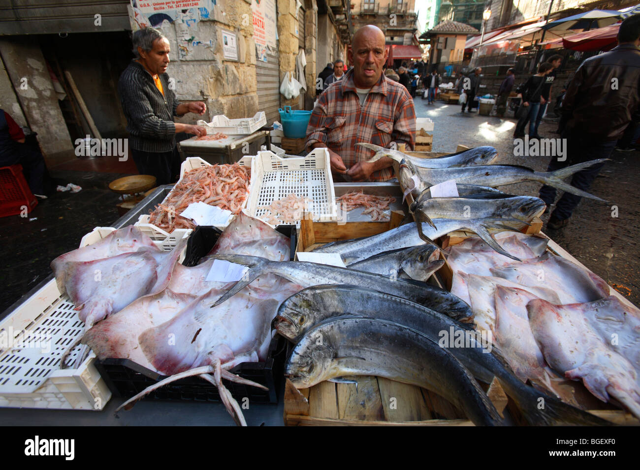 The fish market in catania sicily italy stock photo for Fish market ct