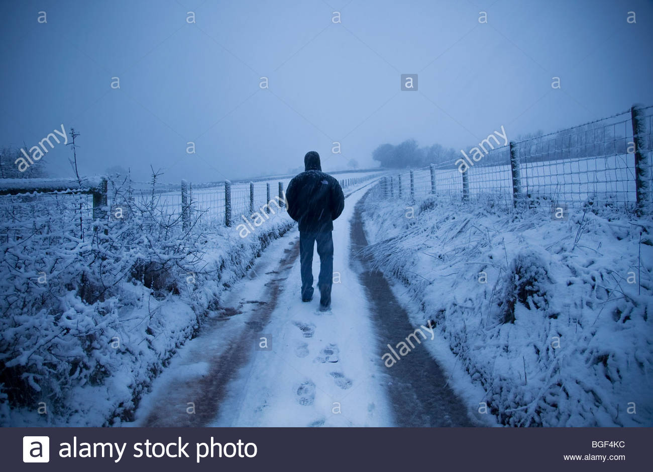 walking in the snow - photo #19