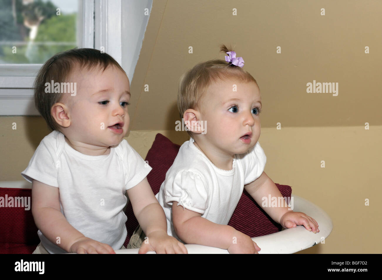 Two babies together in a bathtub Stock Photo, Royalty Free Image ...