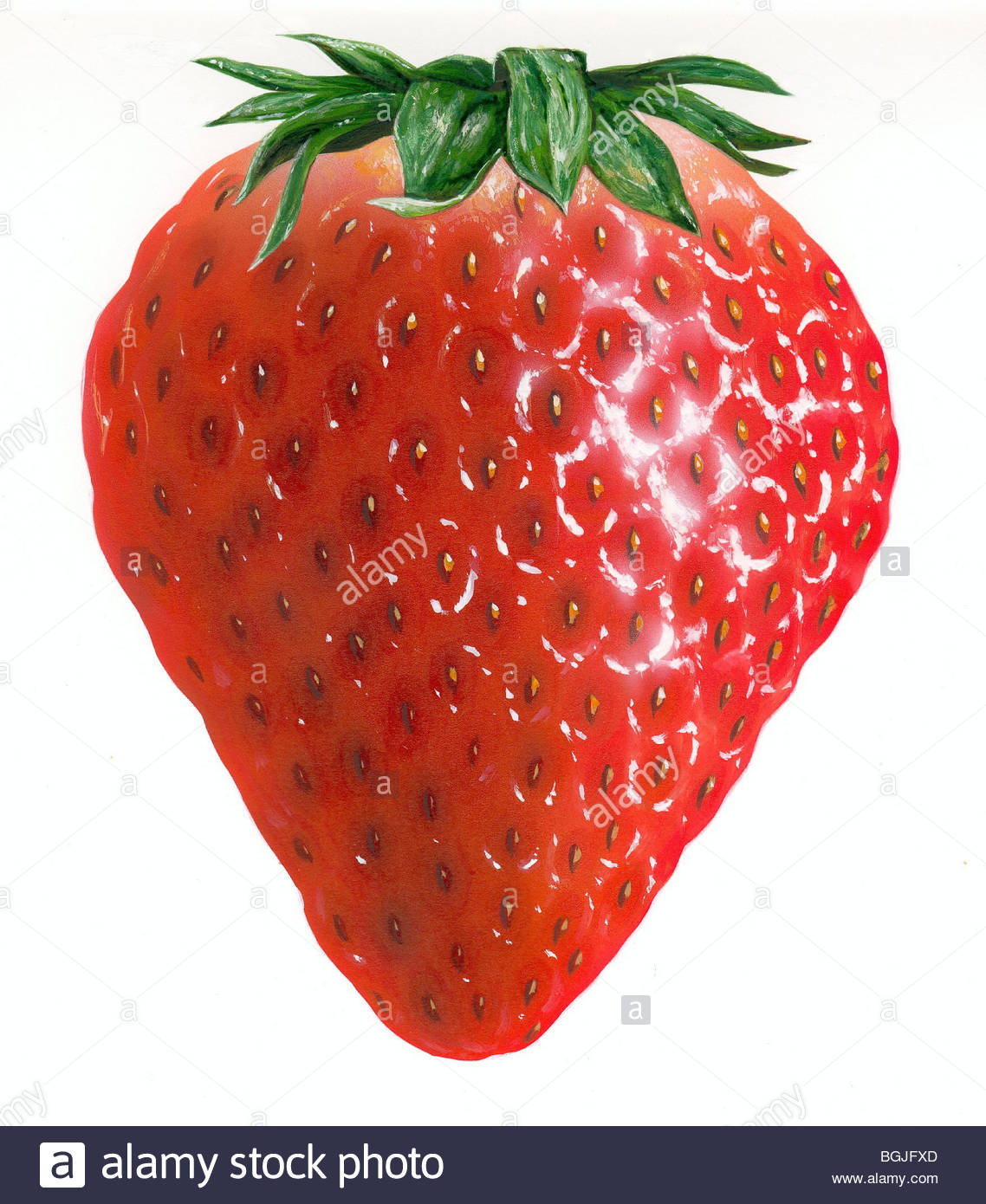 Vitamins in strawberry leaves
