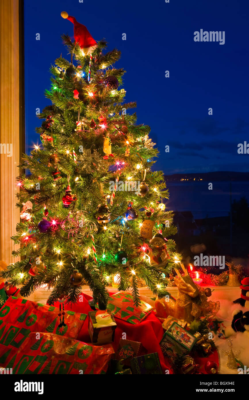 christmas tree with lights and decorations in a window at dusk the artists point - Christmas Tree With Lights