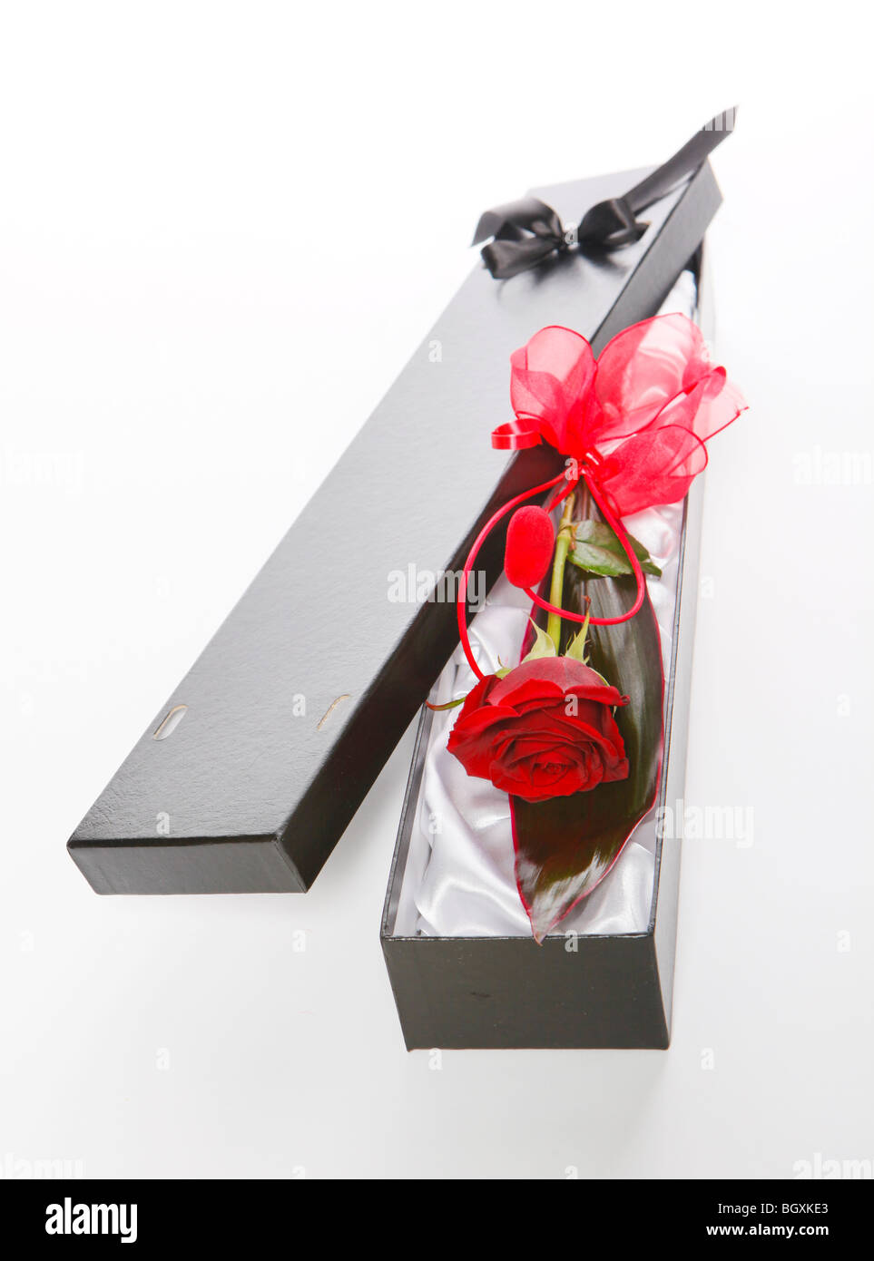 a valentines day gift of a single red rose in a black gift box