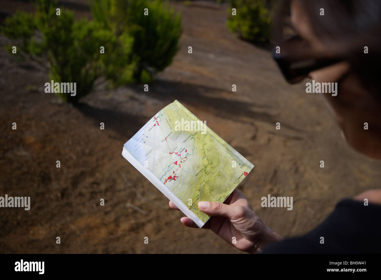 Hiker looking at a map Camino de la Virgin Malpaso El Hierro