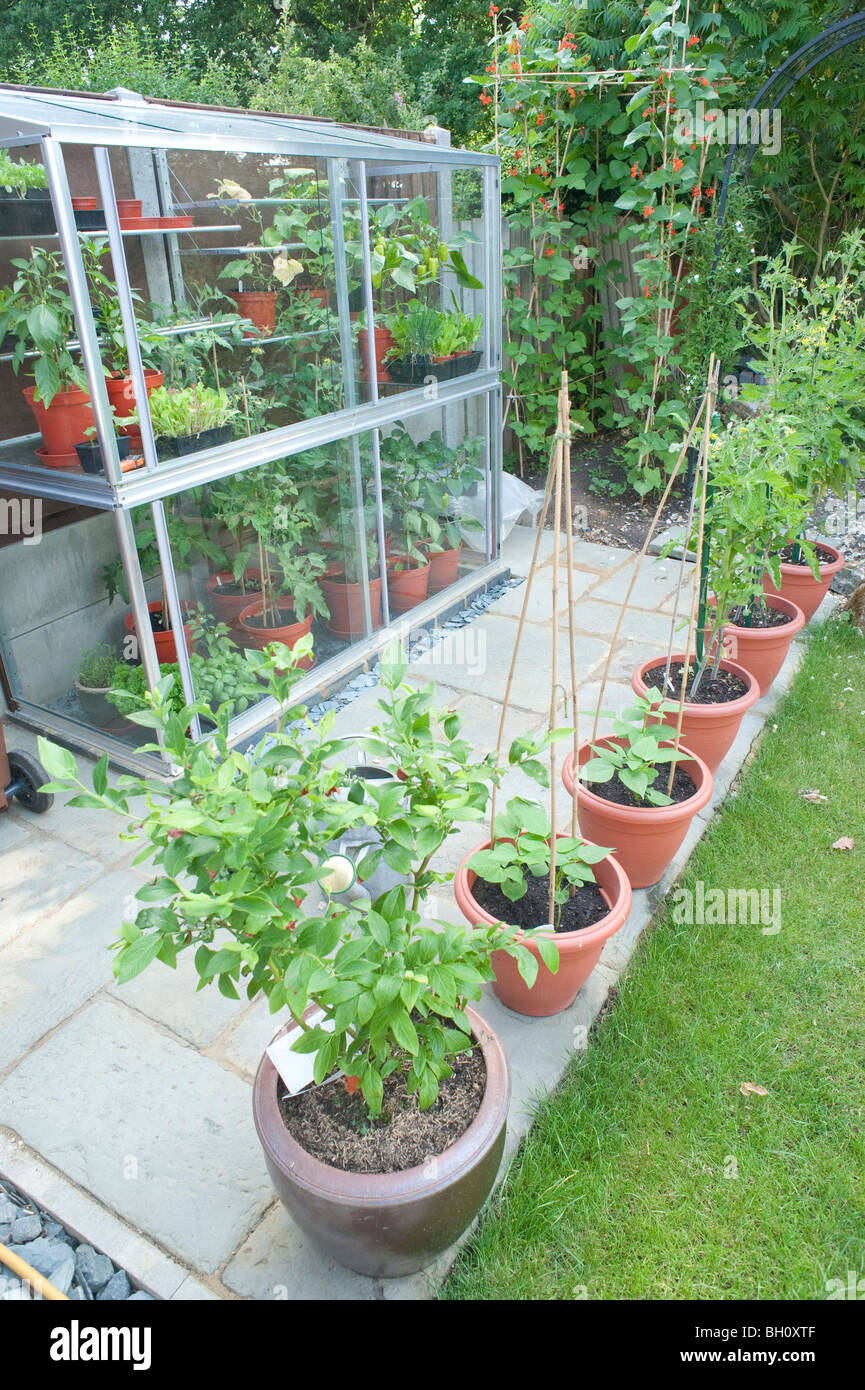 A Small 6ft Tall Mini Lean To Greenhouse Built Up Against A Fence And Small  Patio Area In A Garden