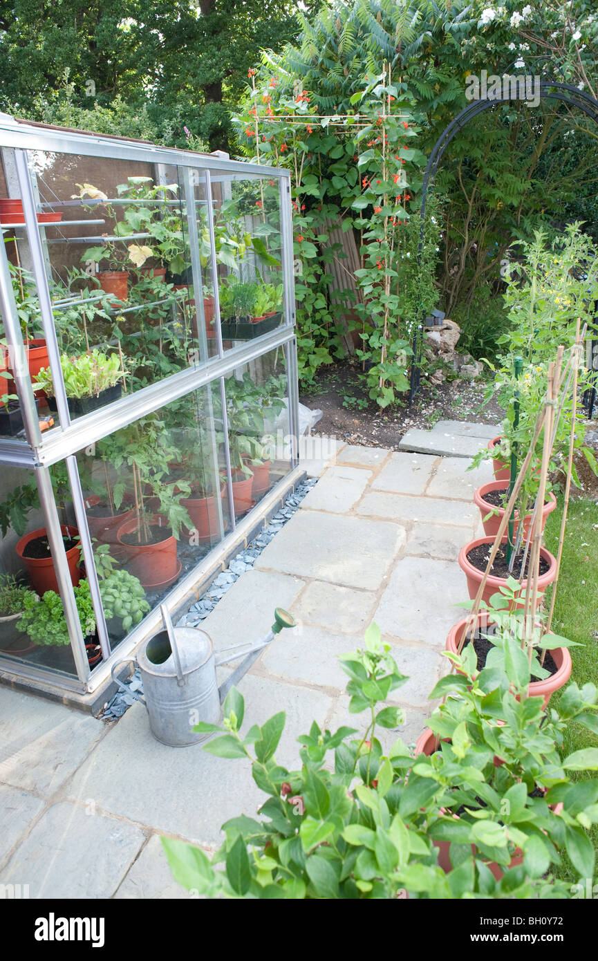 A Small Garden Greenhouse Full Of Tomato Plants, Sweet Peppers Cucumbers  And Lettuce With A Small Patio Area Surrounding It