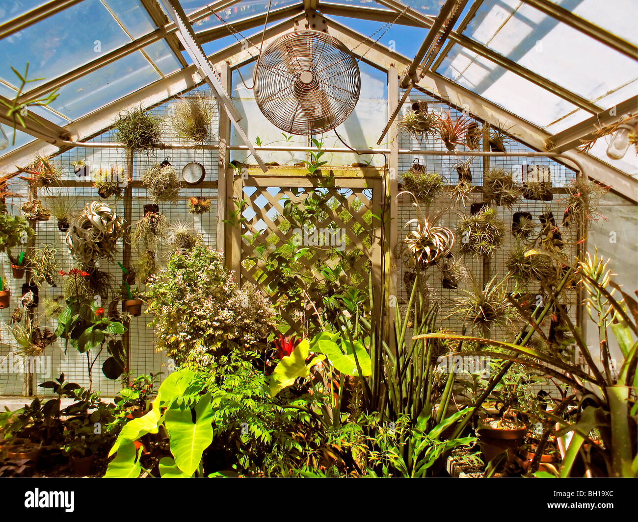 The greenhouse nyc - Greenhouse In Wave Hill Garden Bronx New York