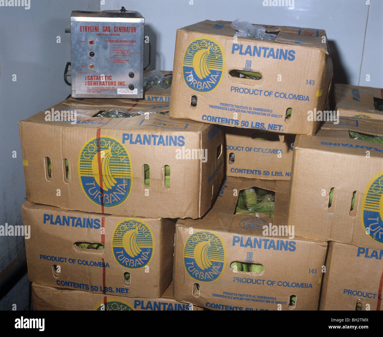 Ethylene Gas Generator In Banana Store For Ripening And