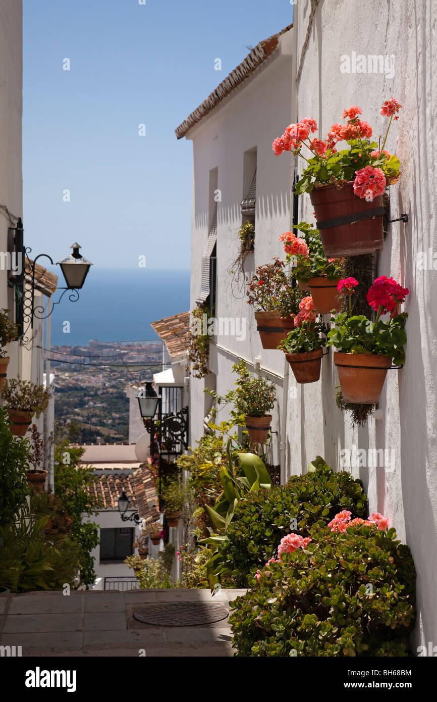 Calle flores pueblo blanco de mijas costa del sol m laga for Calle palma del rio malaga