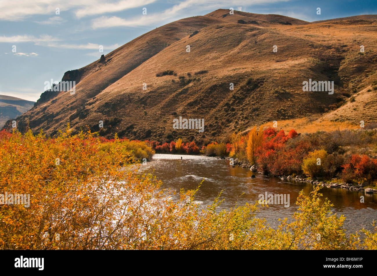 Idaho fly fishing on south fork of the boise river with for Fly fishing boise idaho