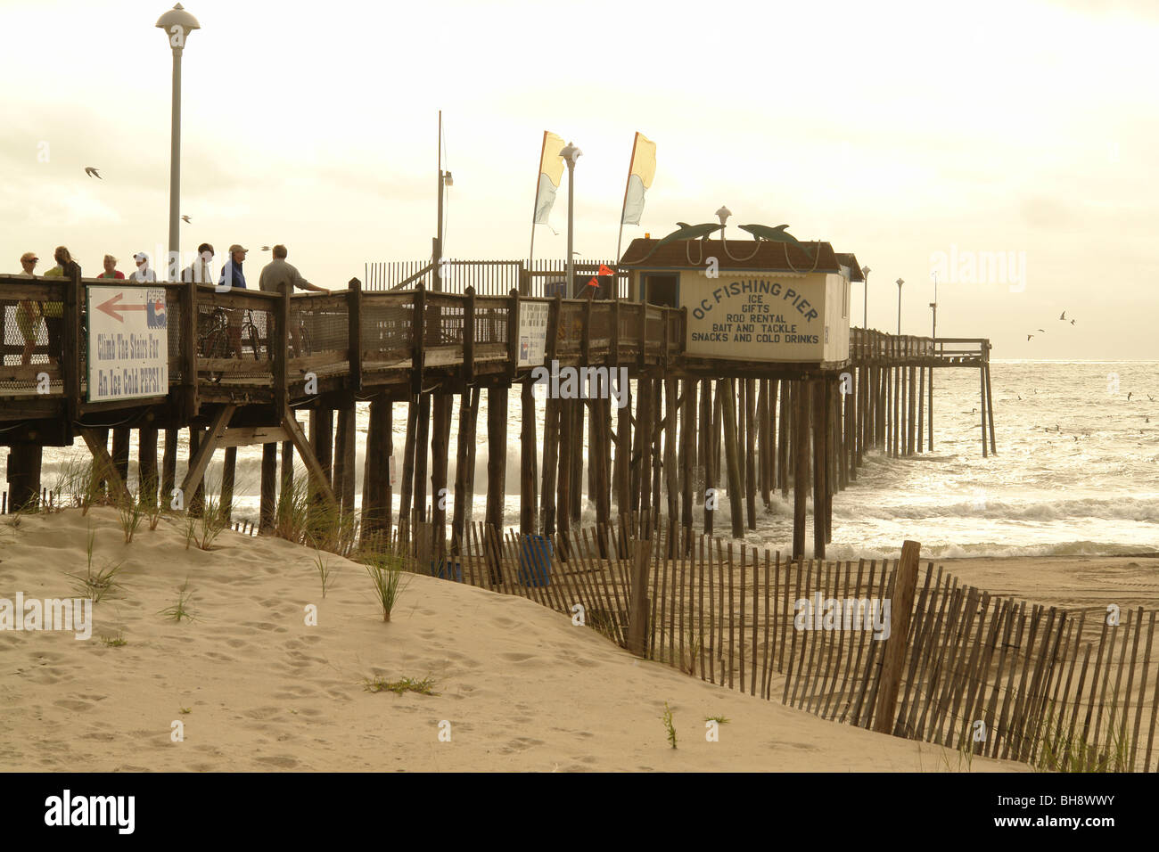 Scopes photography ocean city maryland Daily Press - Hampton Roads News, Virginia News Videos