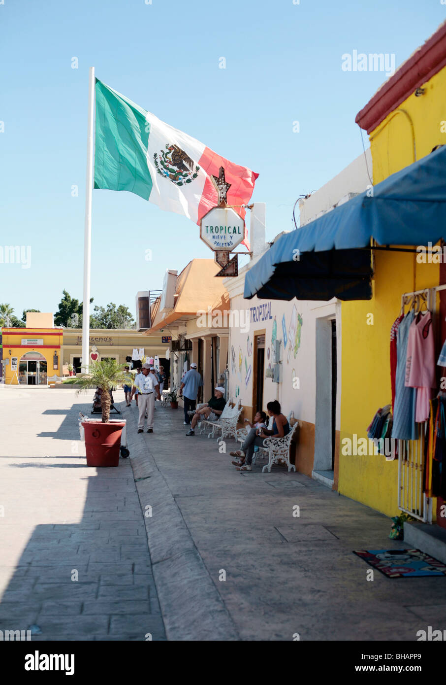 mexican flag flying in the town square of san jose del cabo baja