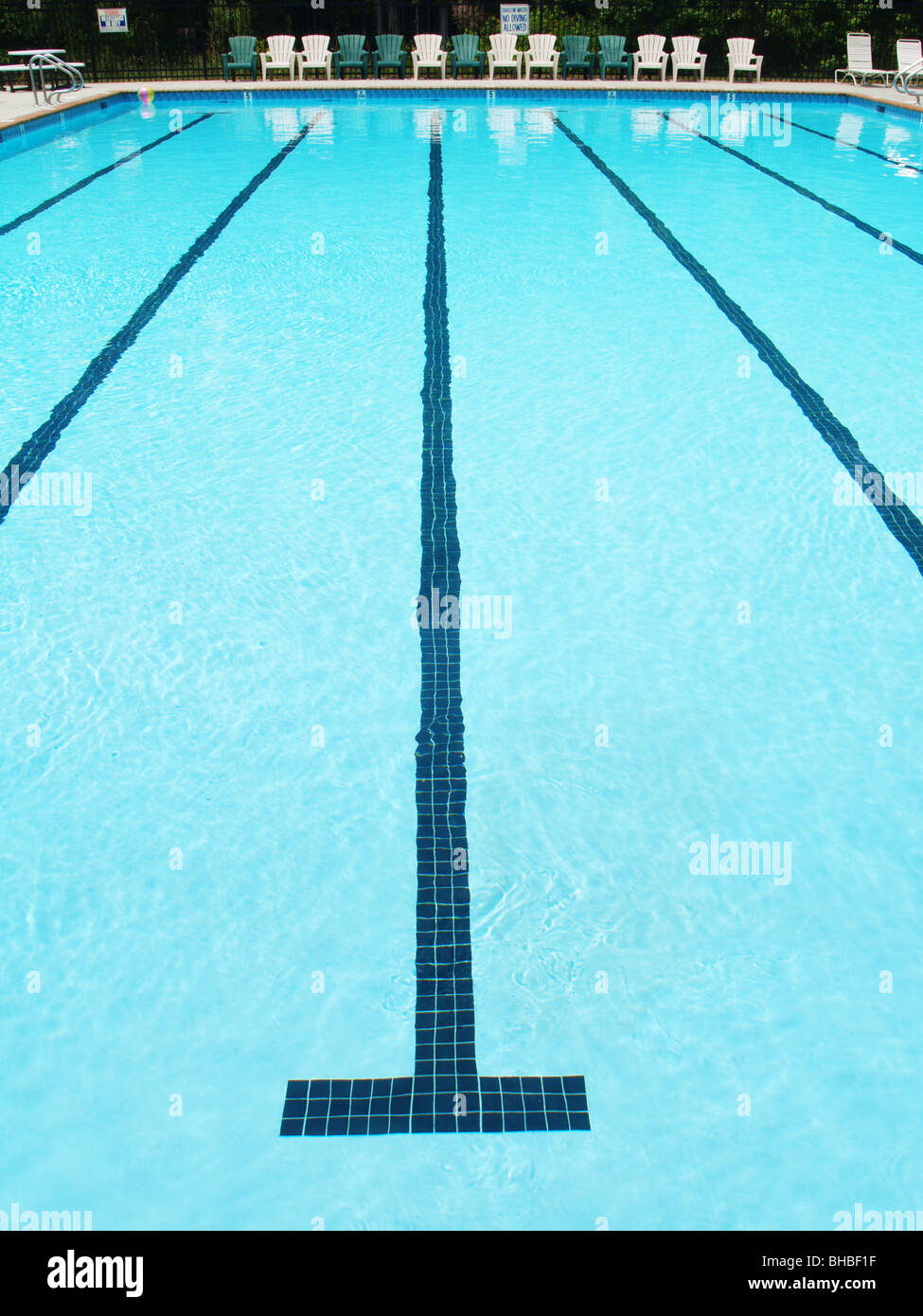 olympic sized swimming pool lane with stripe on the bottom