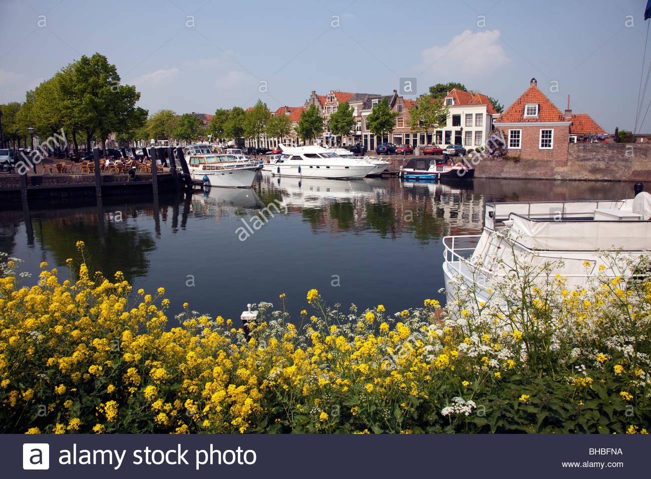 Benelux Bloemen Boat Boats Bomen