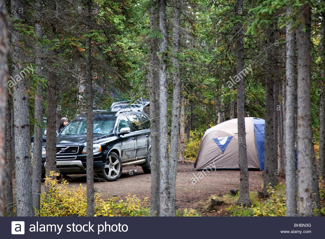 G Bear Tent Stock Photo - bear country