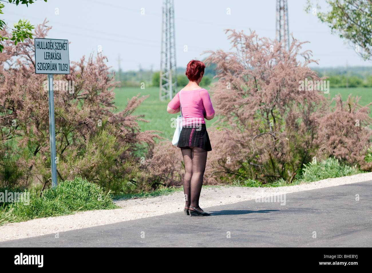 budapest prostituutio video free