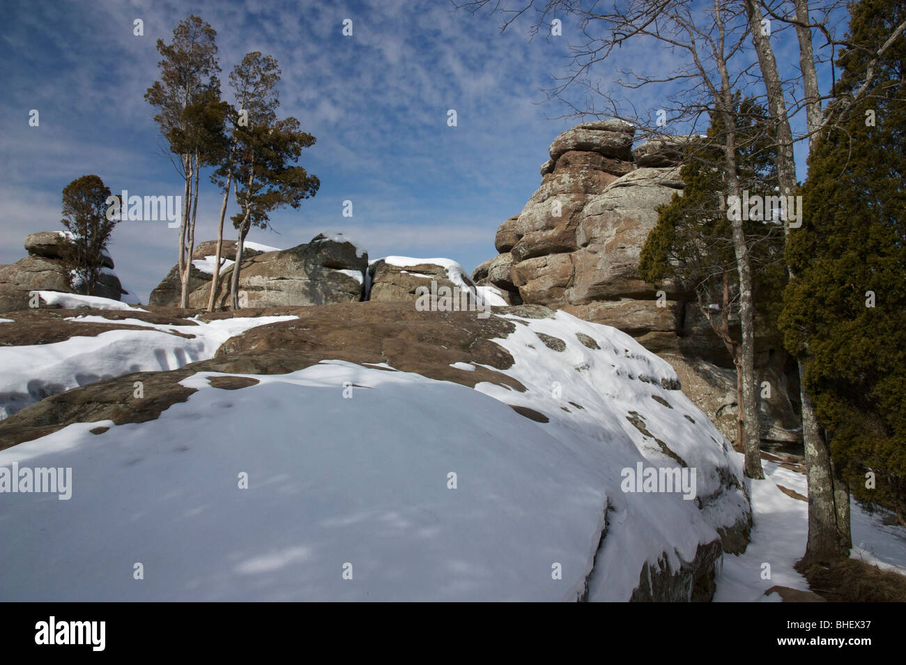 Juniper Trees And Sandstone Outcrop Garden Of The Gods Wilderness Stock Photo Royalty Free