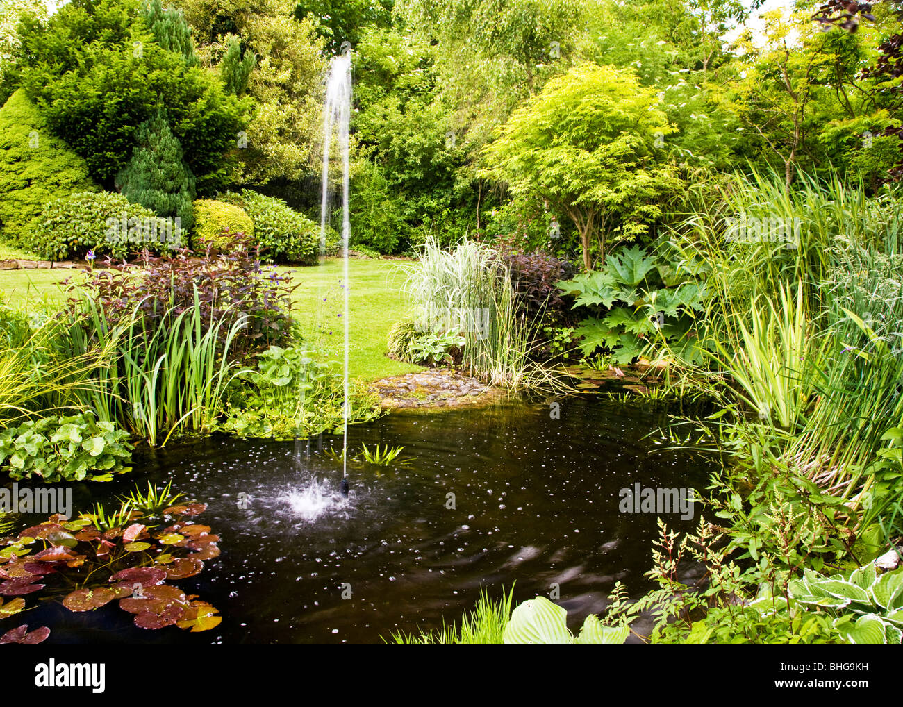 Garden pond with fountain in summer in an english country for English garden pool