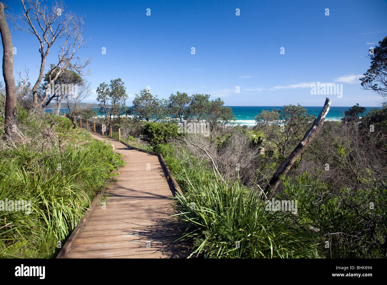 timber-walkway-at-entrance-to-cave-beach