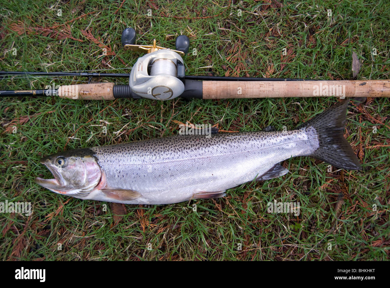 Cutthroat trout fishing lake sammamish washington near for Trout fishing in washington