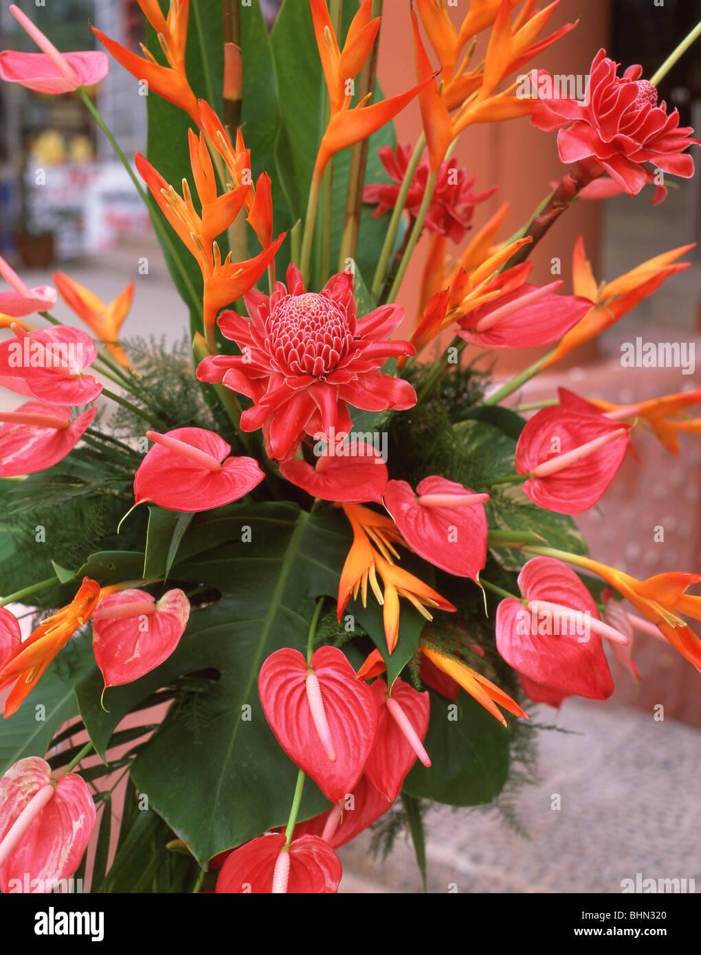 Tropical flowers bouquet phuket phuket province thailand stock tropical flowers bouquet phuket phuket province thailand izmirmasajfo Gallery