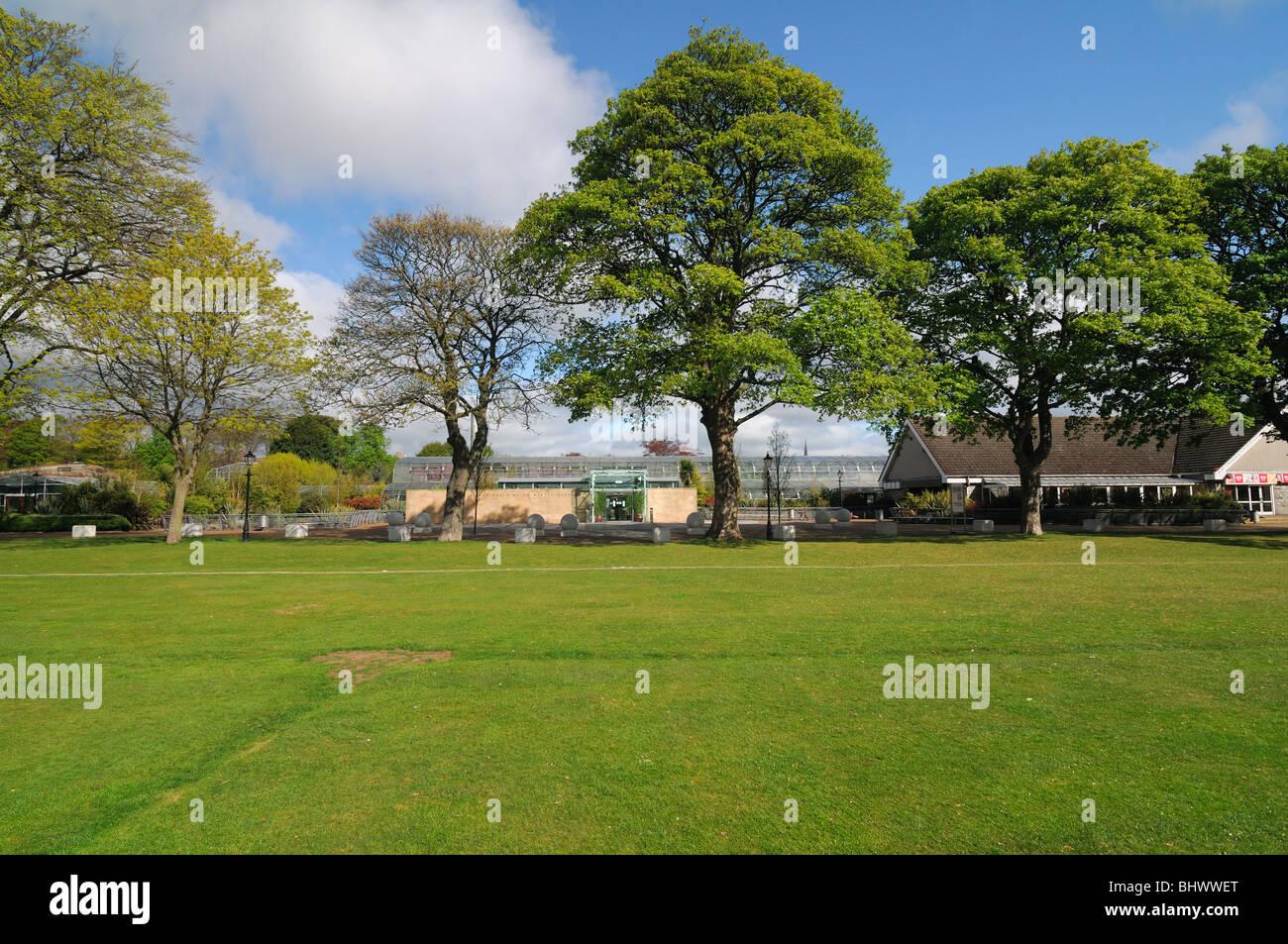 winter gardens duthie park aberdeen scotland stock photo
