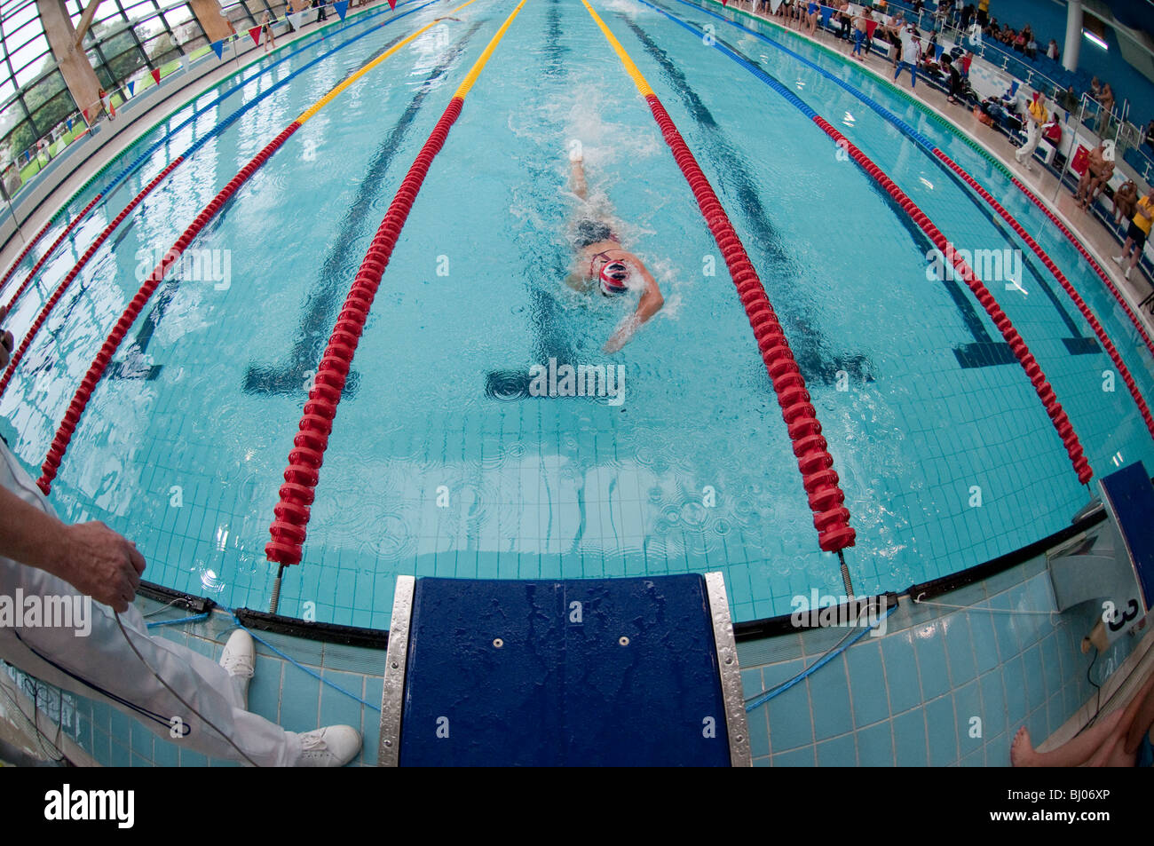 Indoor Swimming Pool Competition Winner At Finish Line Stock Photo Royalty Free Image 28279630