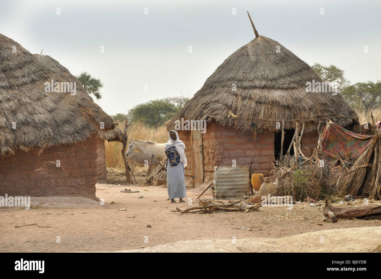 Compound in a village in The Gambia Stock Photo, Royalty ...  Compound in a v...