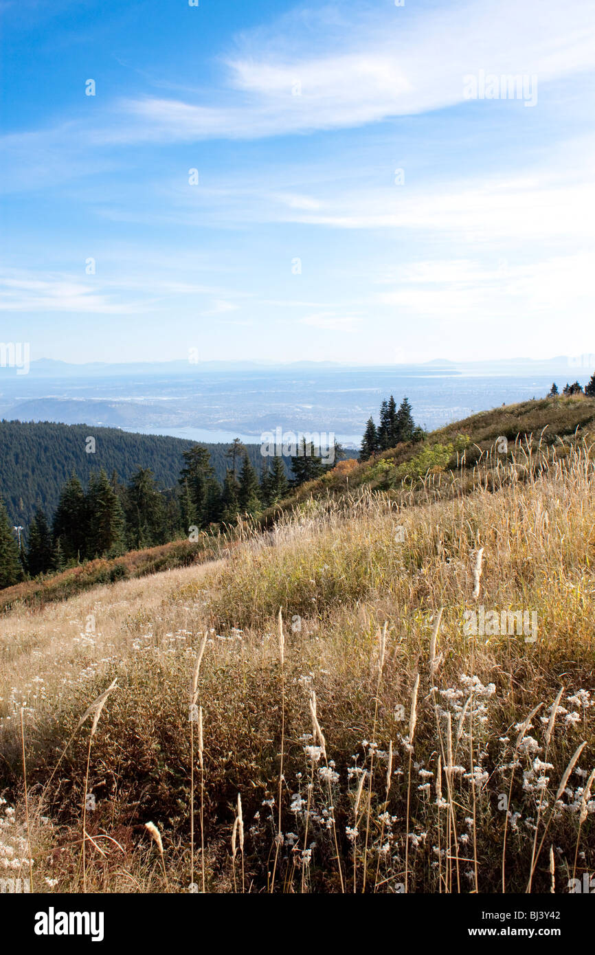 Hillside In Summer With Beautiful Blue Sky On Top Of Grouse Mountain Facing East Toward Vancouver City British Columbia