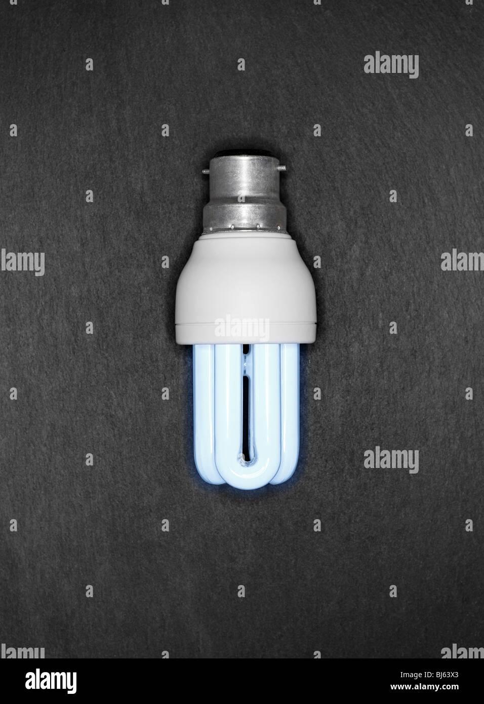 Cool Blue Light Bulbs: Cool Blue Energy Saver Light Bulb on a Grey Slate Background,Lighting