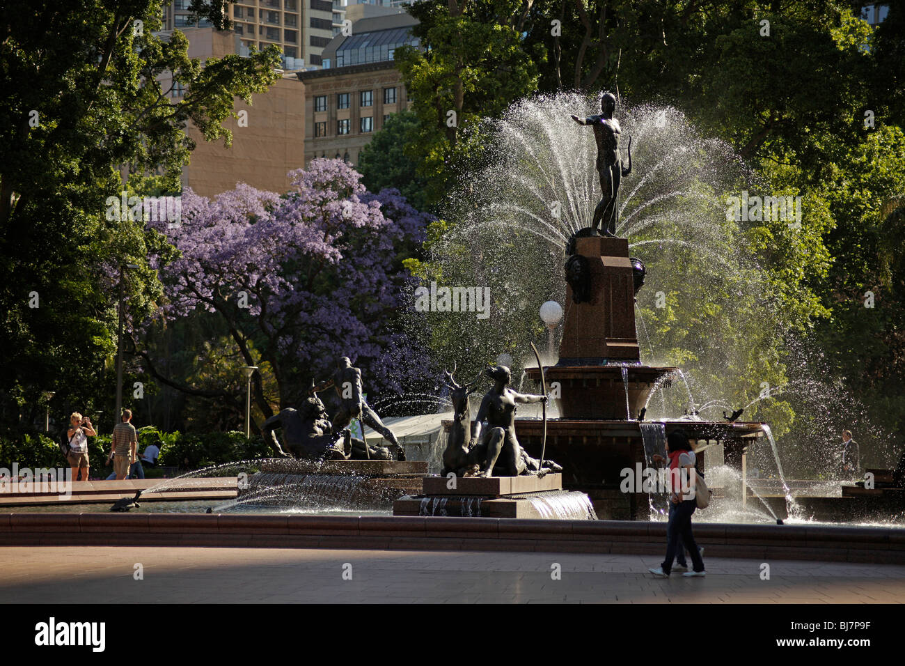 Water fountains hyde park -  Archibald Fountain And Jacaranda Tree At Hyde Park In Sydney New South Wales
