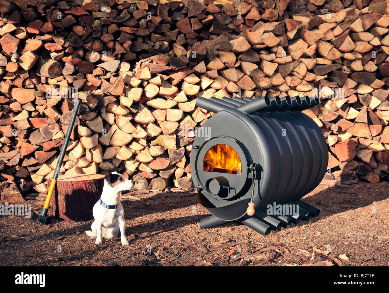 A large wood-burning stove in front of a pile of wood with a small dog in  front of it. There are flames in the stove. - A Large Wood-burning Stove In Front Of A Pile Of Wood With A Small