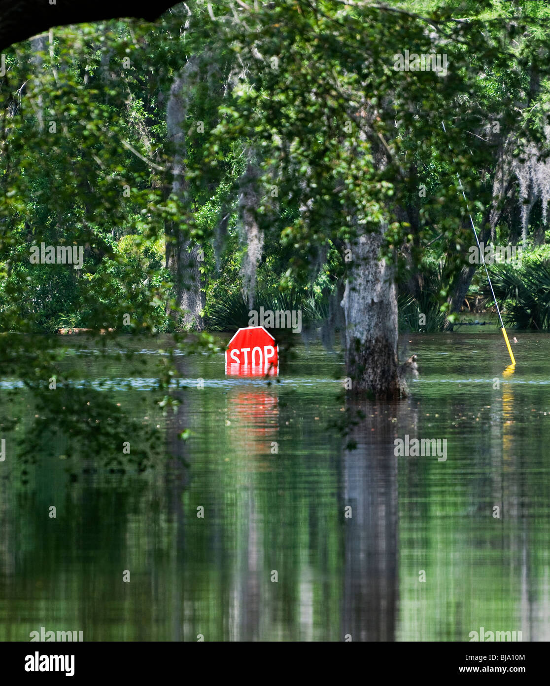 Flooding Of North Florida Rivers After Heavy Spring Rain Stop - Florida rivers