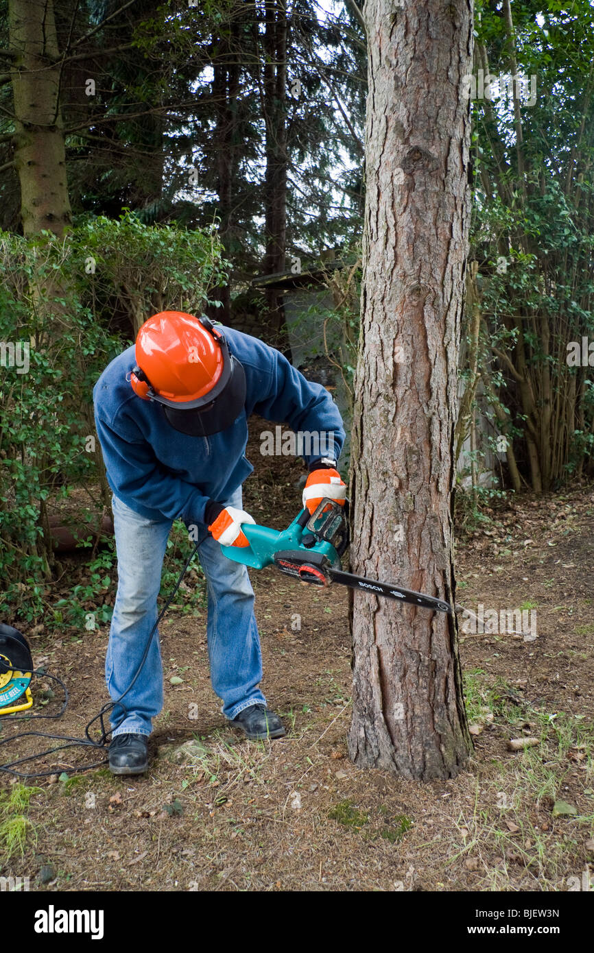 Tractor Man On Cutting Trees : A man cutting down tree with chainsaw stock photo