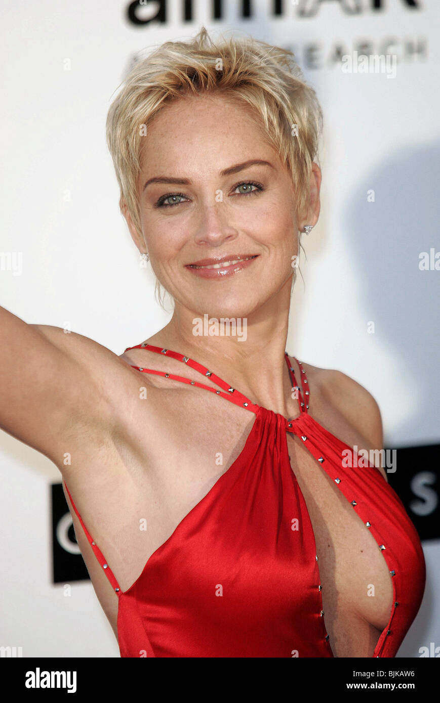 sharon stone cannes film festival 2004 cannes france 20 may 2004 stock photo royalty free image. Black Bedroom Furniture Sets. Home Design Ideas